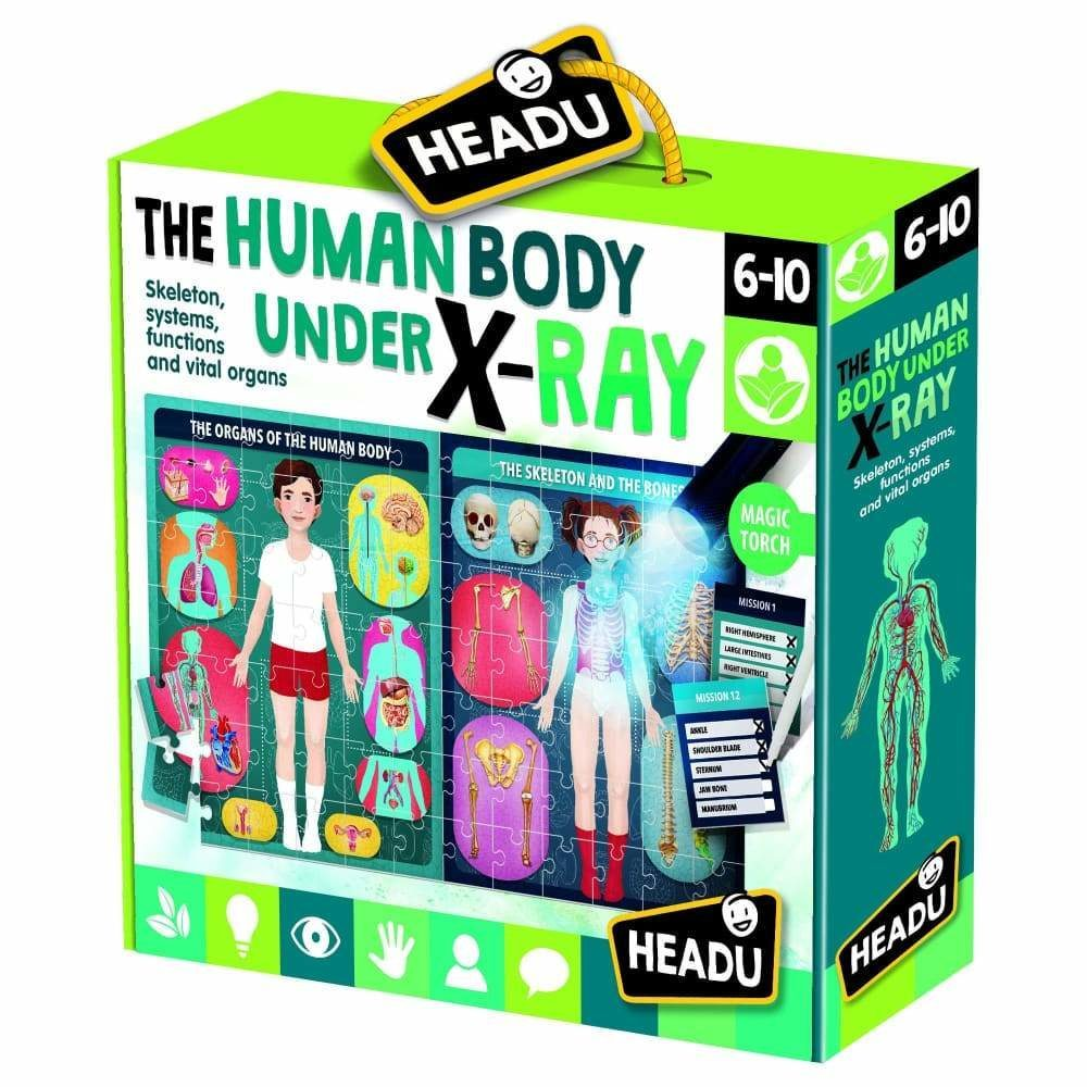 Headu X Ray Human Body 6-10 yrs Puzzles | First Class Office Online Store